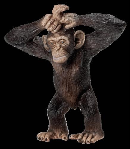 Schleich Wild Life Mlade simpanze