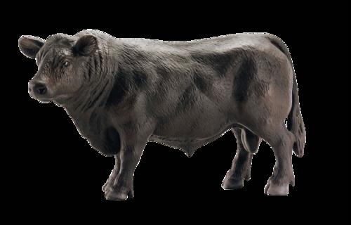Schleich Horse Club Black Angus Bull
