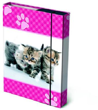 Box na sešity A4 Koťátka