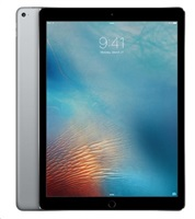 iPad Pro Wi-fi 256GB Space Grey