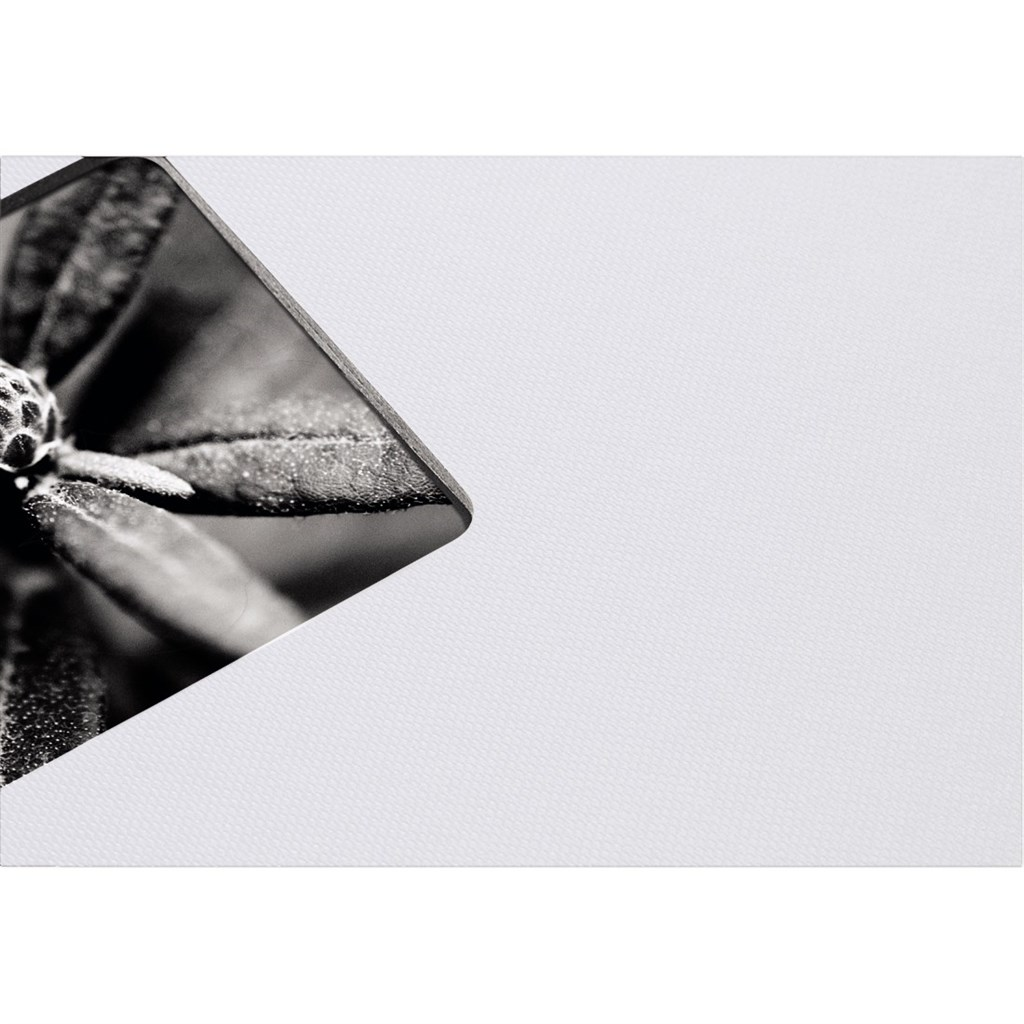 Hama album klasické spirálové FINE ART 28x24 cm, 50 stran, křídová