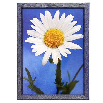 Hama 1122 rámeček dřevěný TRAVELLER II, modrý, 21x29,7 cm