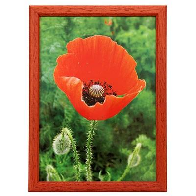 Hama 1134 rámeček dřevěný TRAVELLER II, červený, 21x29,7 cm
