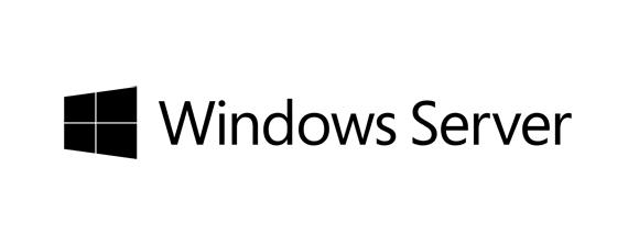 Win Server CAL 2016 (10 User)