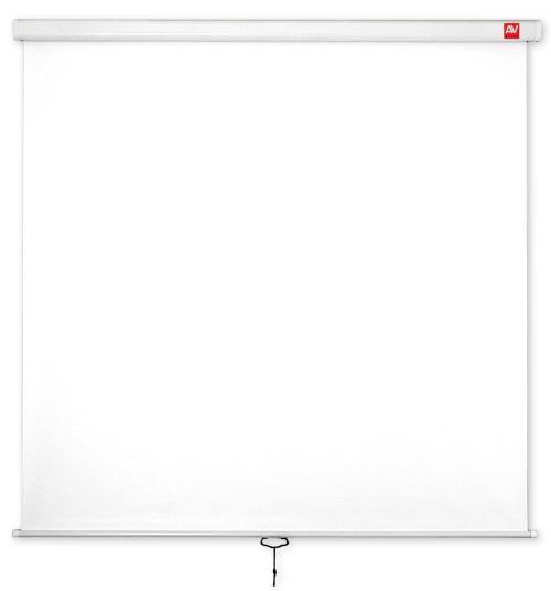 Avtek plátno Wall Standard 200x200 (1:1) Matt White