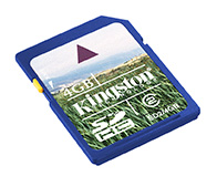 Kingston 8GB SecureDigital (SDHC) Memory Card (Class 4)