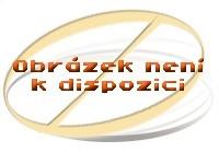 Beko DFS 26020 W