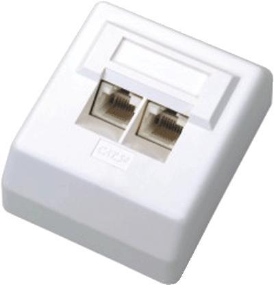 DATACOM Datová zásuvka UTP CAT6 2xRJ45 na omítku 45st. bílá