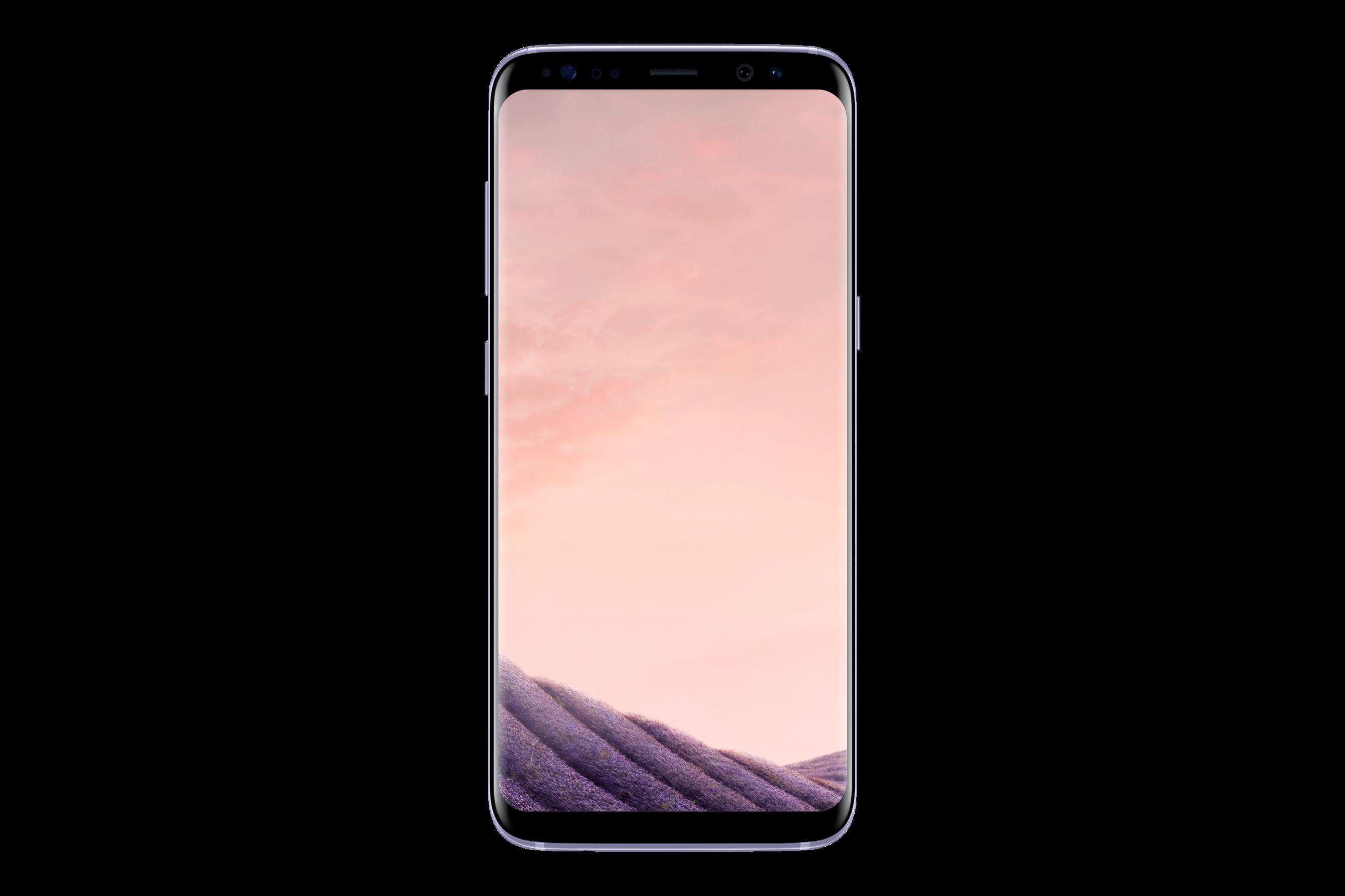 Samsung Galaxy S8 (G950), 64 GB, šedá