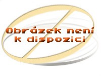 Chladnička Zanussi ZRG 11600 WA