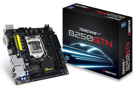 Biostar B250GTN, LGA 1151, B250, DDR4-2400, 4 x USB 3.0