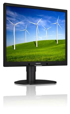 "Philips LCD 19B4LCB5 19""/1280x1024/5ms/20mil:1/VGA/DVI/LED/pivot/repro"