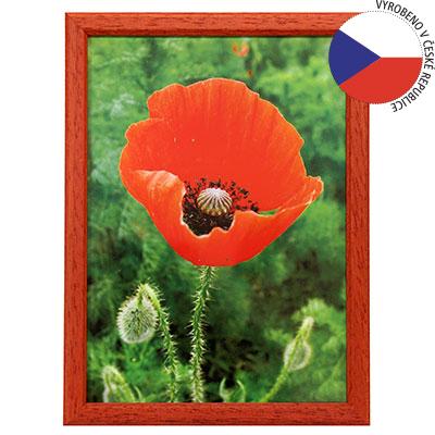 Hama 1131 rámeček dřevěný TRAVELLER II, červený, 9x13cm