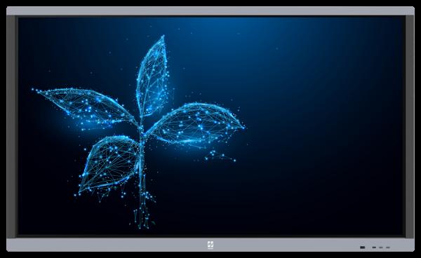 SET: 2x Avtek Touchscreen 5 Connect 65