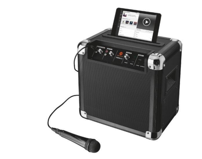 Fiësta Go Wireless Party Speaker