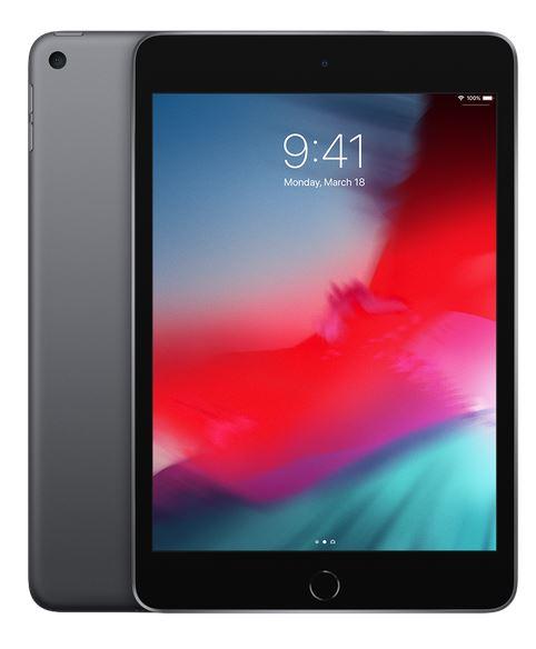 iPad mini Wi-Fi + Cellular 64GB - Space Grey