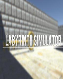 ESD Labyrinth Simulator